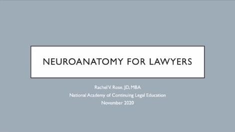 Neuro Anatomy for Lawyers Thumbnail